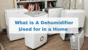 What is A Dehumidifier Used for in a Home