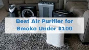 Best Air Purifier for Smoke Under $100