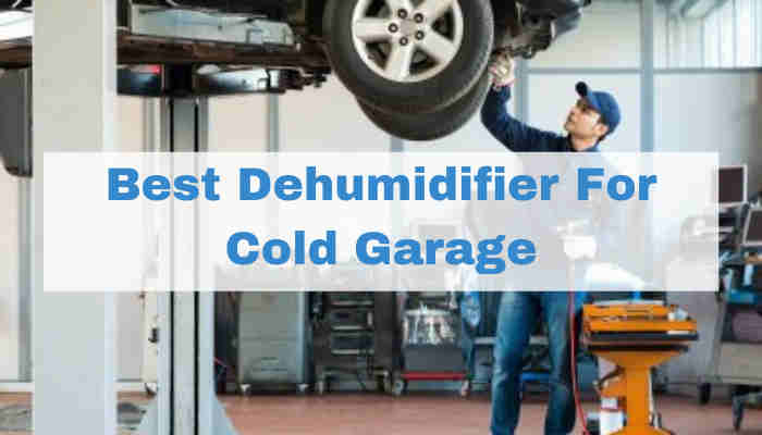 Best Dehumidifiers for Cold Garage