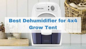 Best-Dehumidifier-for-4x4-Grow-Tent