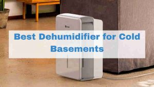 Best Dehumidifier for Cold Basement